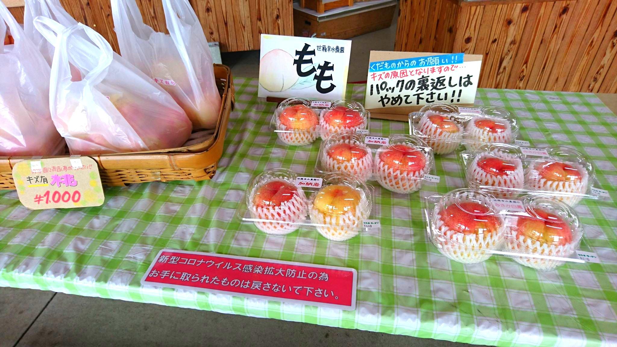 世羅幸水農園 桃の販売 加納岩白桃・みさか白鳳 1