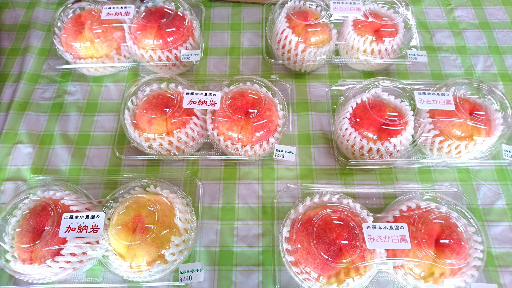 世羅幸水農園 桃の販売 加納岩白桃・みさか白鳳 2